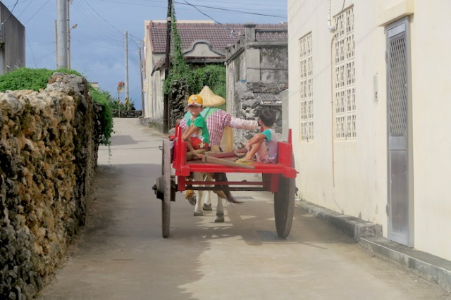 Two kids being towed in a cart by a cow