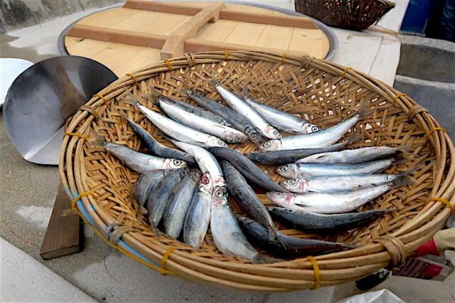Sardines cooked with Fu Ji Stove