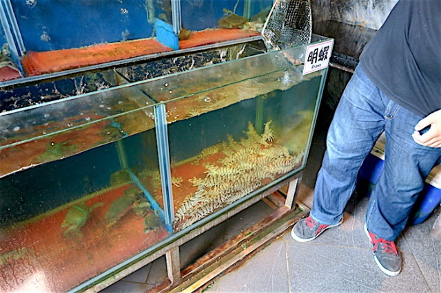 A chef at Fu Lou Restaurant catches a live Mingxia Prawn from the tank